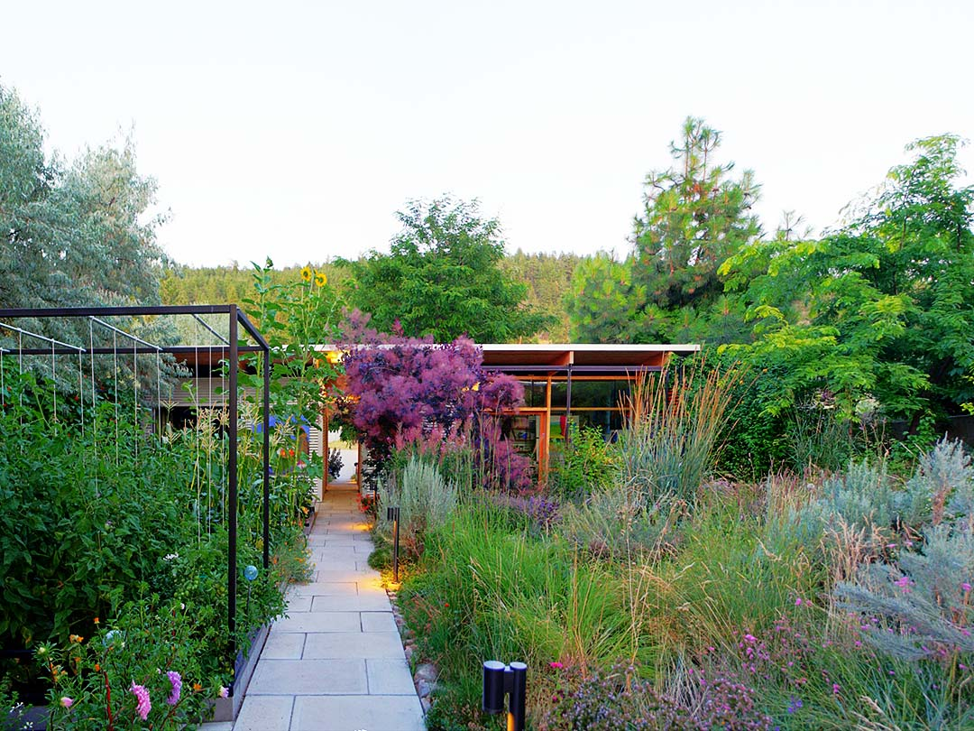 xeriscape gardening eliminates pesticide use