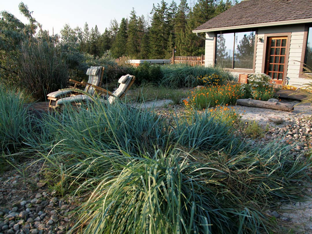 Youngberg Garden rustic xeriscape patio