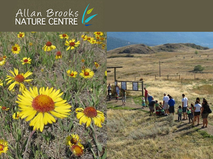 Link to the Allan Brooks Nature Centre in Vernon