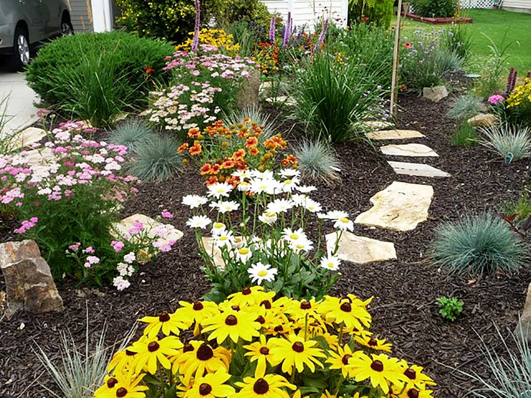 Organic mulch on xeriscape bed