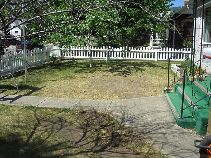 Lisa's Garden before xeriscaping