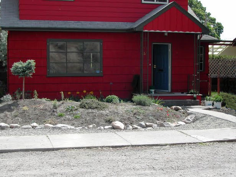 Front flowerbed year one