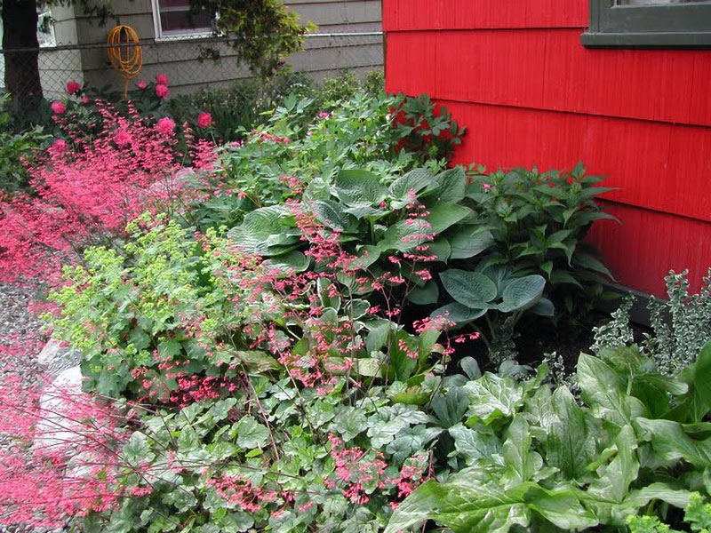 xeriscape gardening saves money