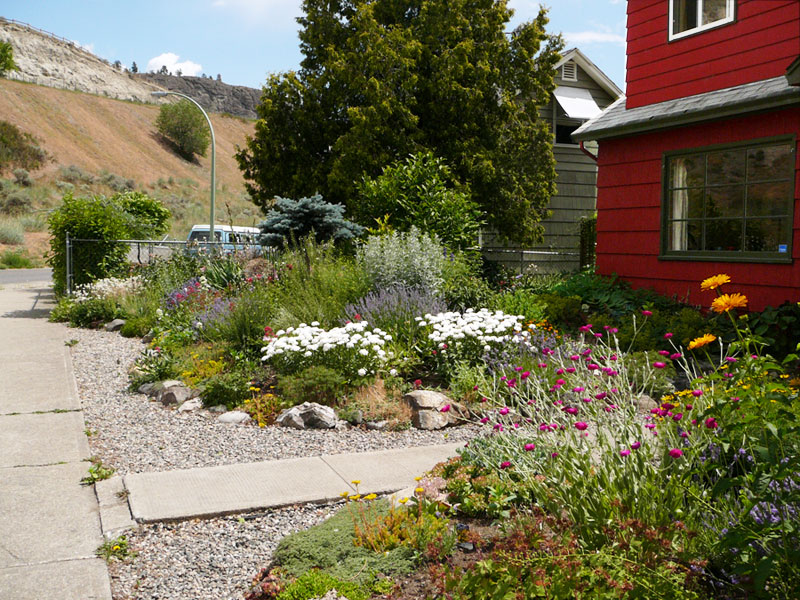Xeriscape garden at the foot of Knox Mountain Kelowna