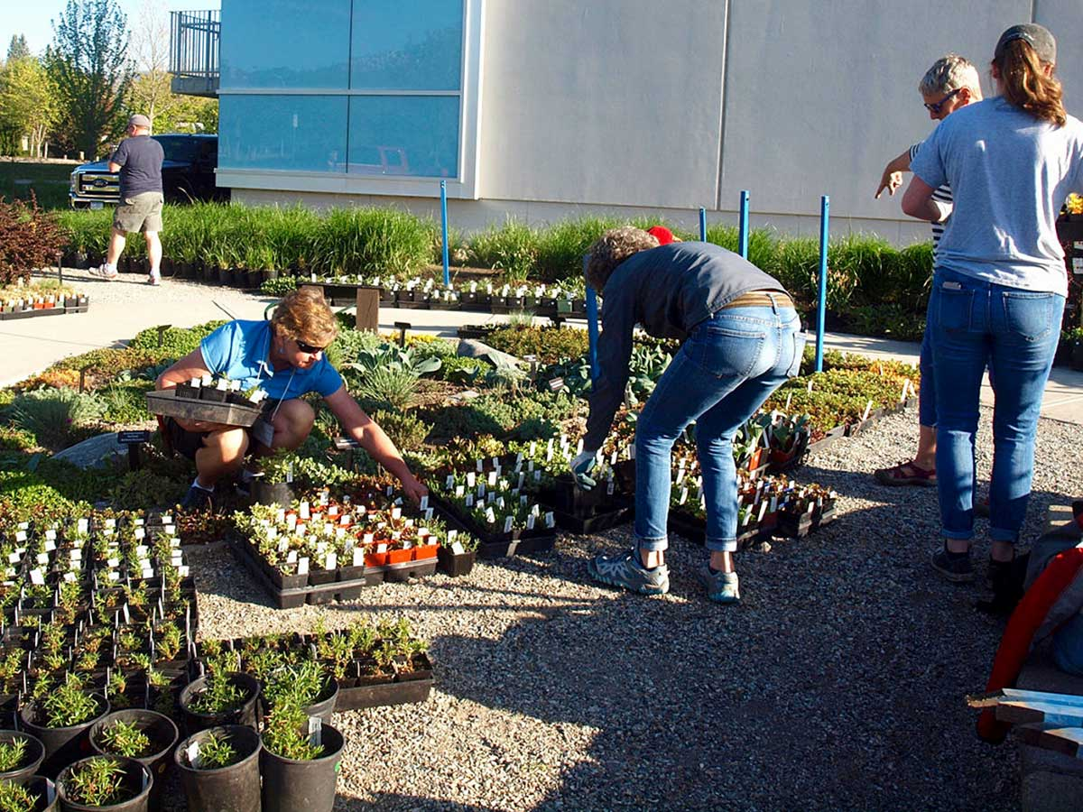 OXA volunteers helping at the annual Plant Sale