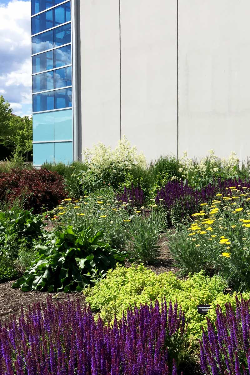 the UnH2O demonstration garden project by the OXA